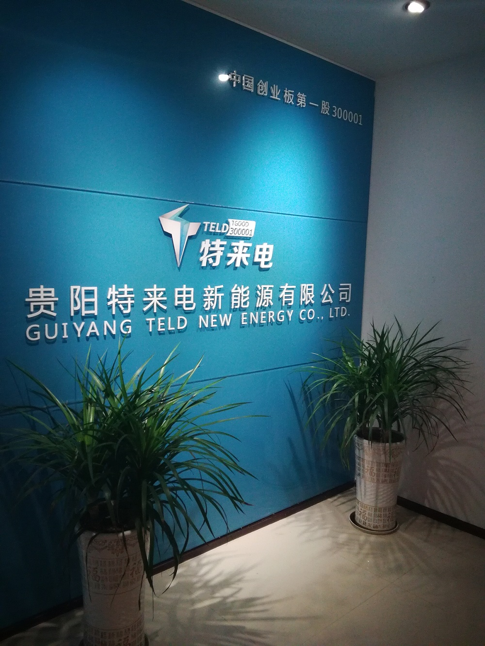 公司简介 一,公司简介     贵阳特来电新能源有限公司是青岛特来电新